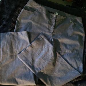 Allison Daley 11 Ladies Grey Pants Size 24W